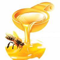 Thuốc sữa ong chúa của Úc lợi hay hại