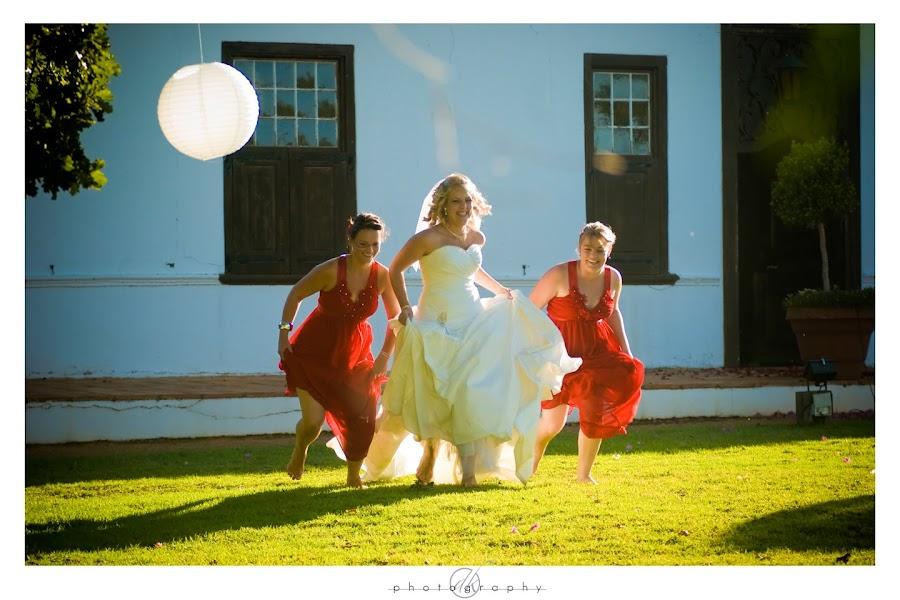 DK Photography Mari23%252B Mariette & Wikus's Wedding in Hazendal Wine Estate, Stellenbosch  Cape Town Wedding photographer