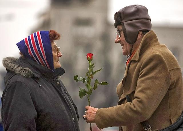 дедушка дарит бабушке цветы