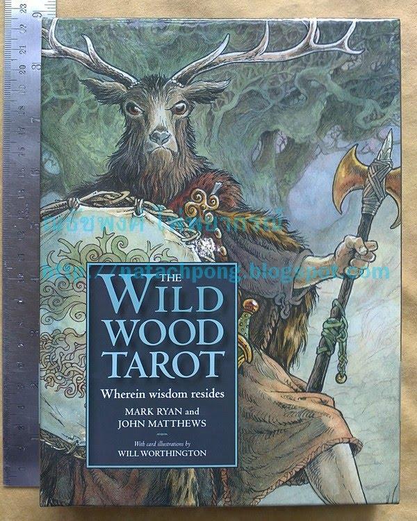ไพ่ทาโรต์ หัวกวาง Tarot