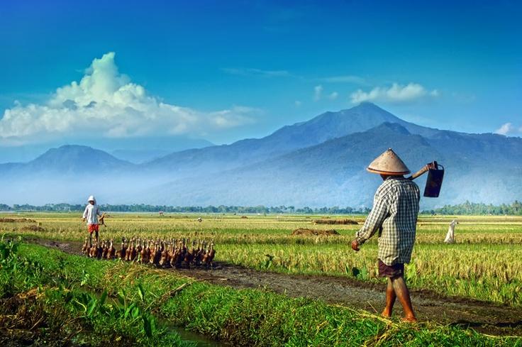 Banyu Biru Ambarawa Central Java Indonesia