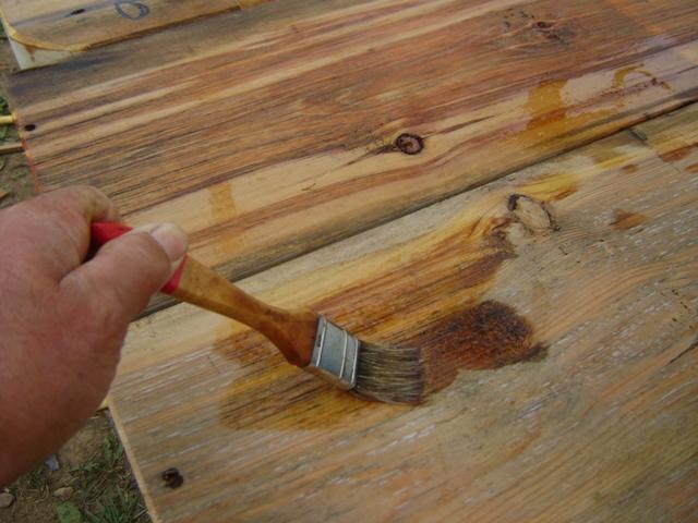 El sexagenario la semillita en el lugar adecuado y el - Taladro de la madera ...