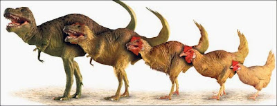 From%2Bchicken%2Bto%2Bdinosaur.jpg