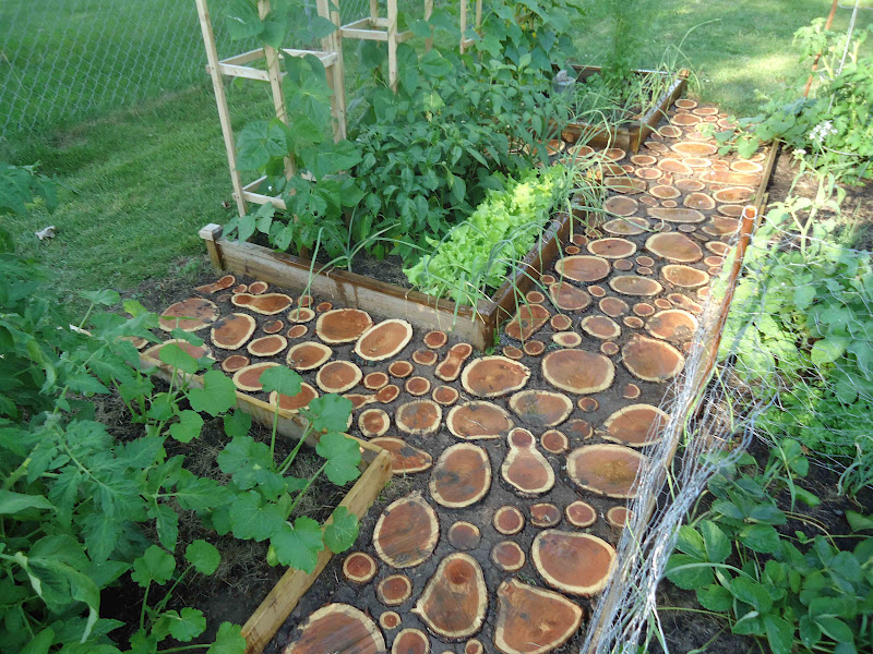Domesticated nomad garden path redux Round wooden stepping stones