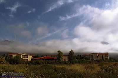 Monachus Monachus Apartments: road view