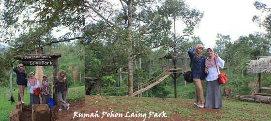 Objek wisata keluarga Rumah Pohon Laing Park Solok