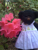 Springtime Flowers at Callaway Gardens