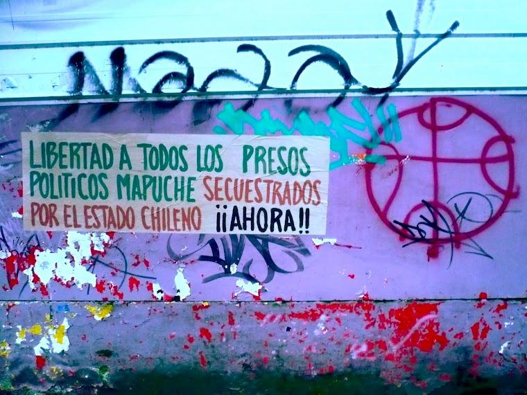 (En el día 53 de huelga de hambre de los presos políticos mapuche en los calabozos de Angol)