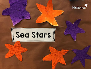 sea star craft