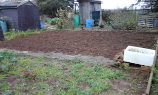 freshly dug and weeded earth.