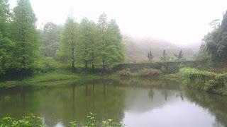 鹿寮坑濕地