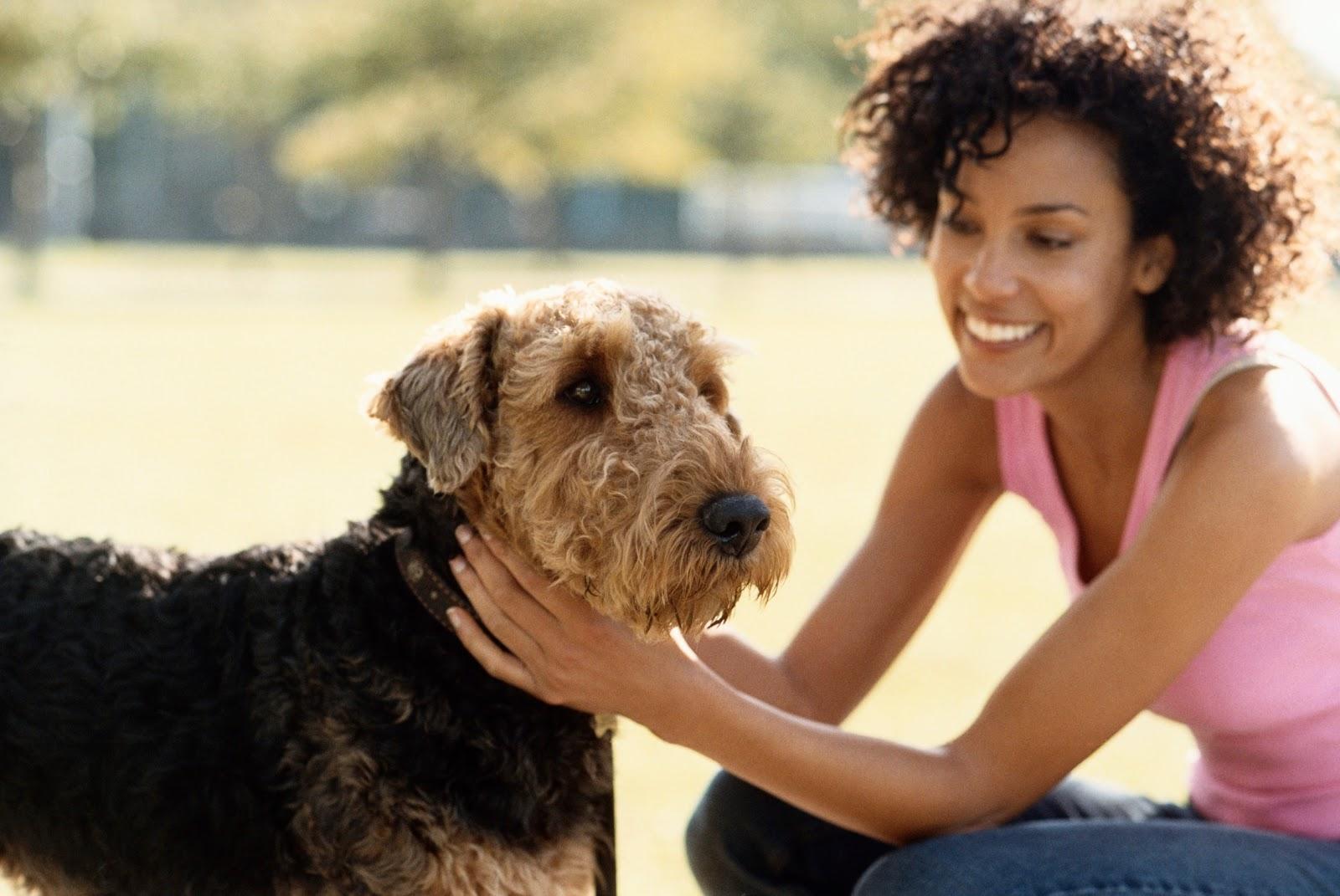 Passear com o cachorro aumenta as chances de arrumar uma namorada, diz