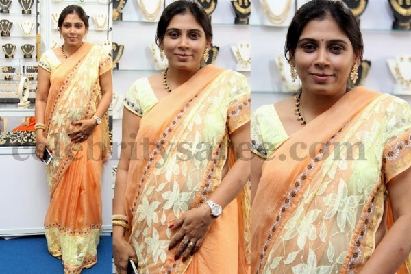 Wrinkle Chiffon and Brasso Saree