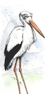 framed baby stork shower illustration ink watercolor ammon perry