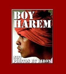 Boy Harem