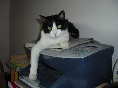 printer paused