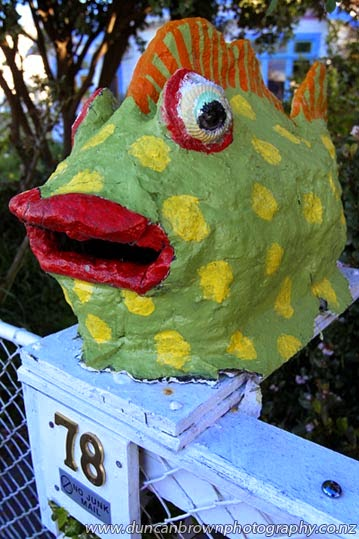 You see so much when you walk places - Fish letterbox in Napier photograph