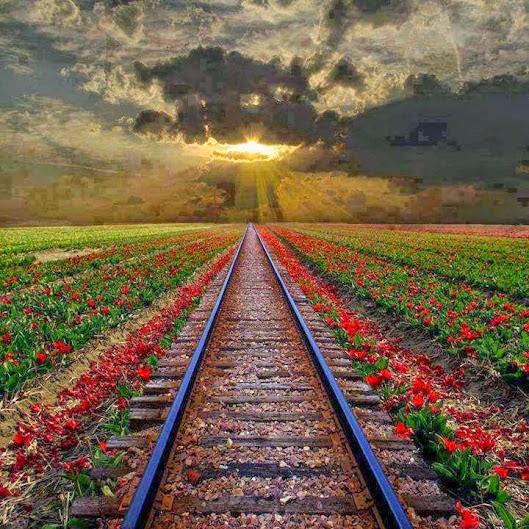 demiryolu manzarası