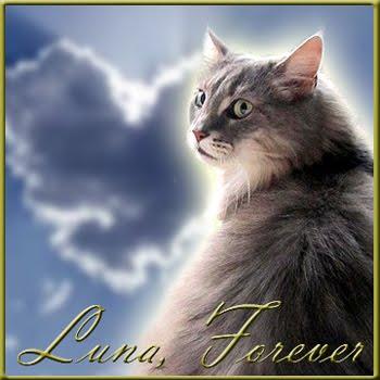 Luna Forever