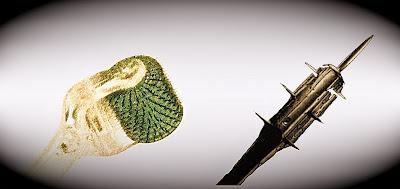 Derma roller vs medieval torture device