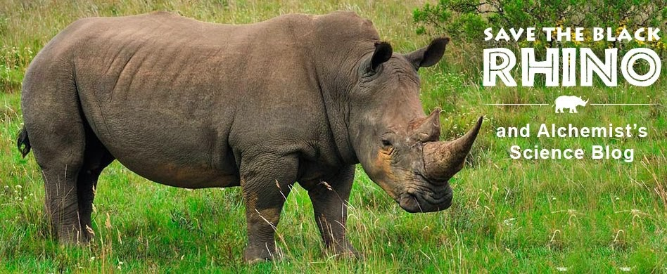 Saving The Black Rhino Project