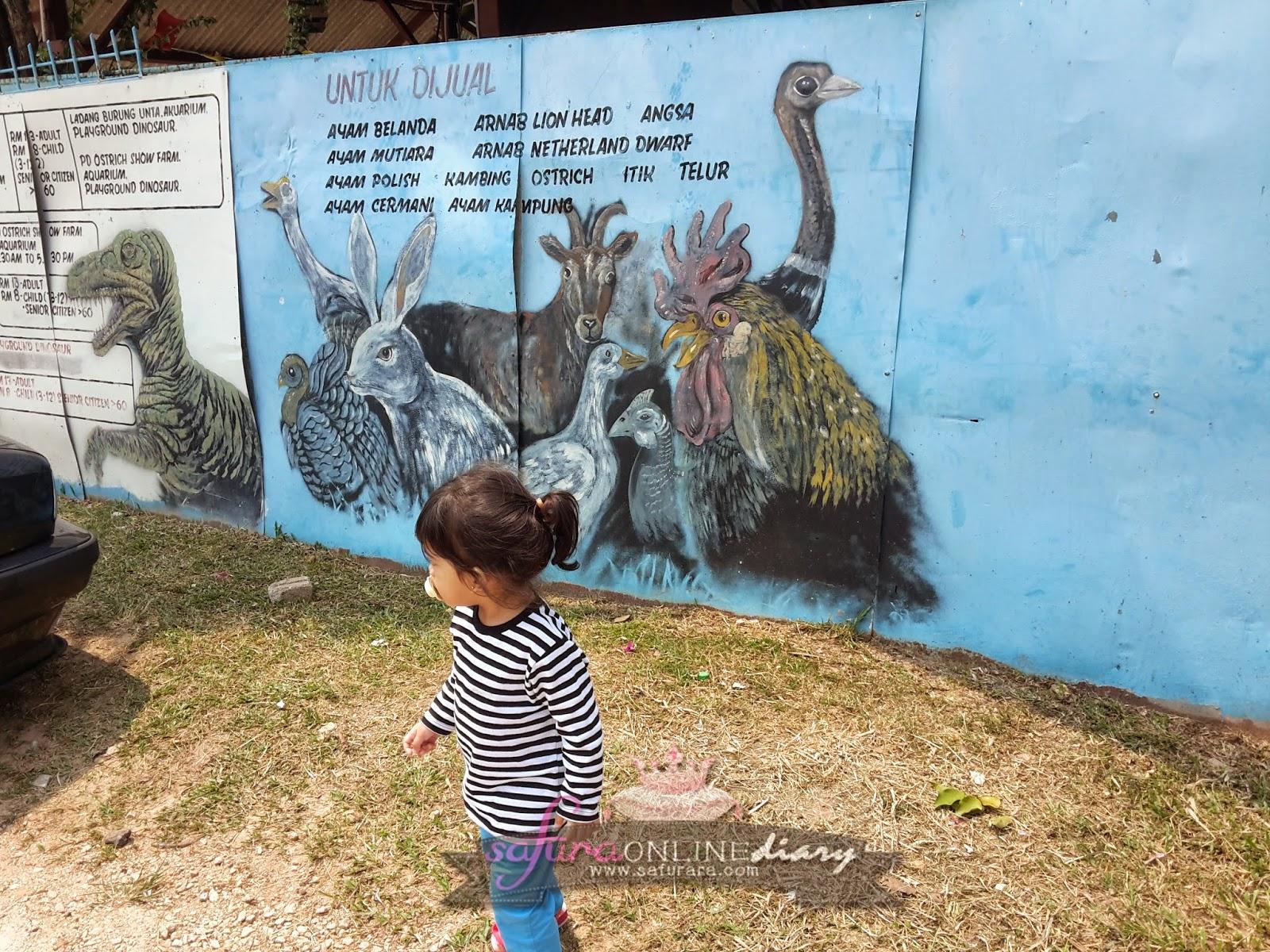 Harga Tiket Masuk Ostrich Farm Port Dickson 2014