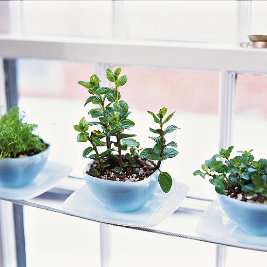 Herb gardens 30 great herb garden ideas the cottage market solutioingenieria Choice Image