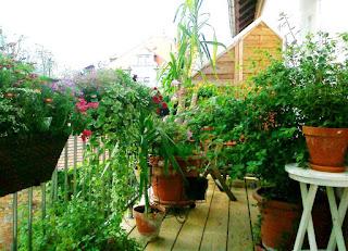 Foto Balkon foto 2