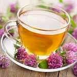 Chá de Valeriana para insônia