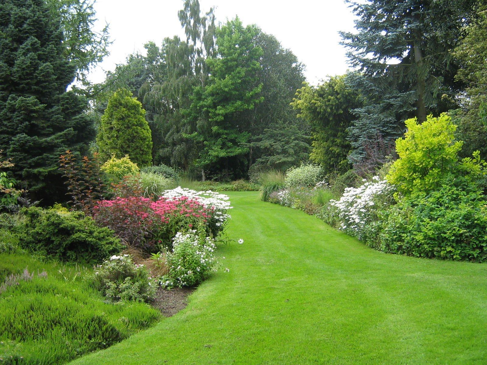 Arte y jardiner a plantas perennes en el dise o de jardines for Arbustos perennes para jardin