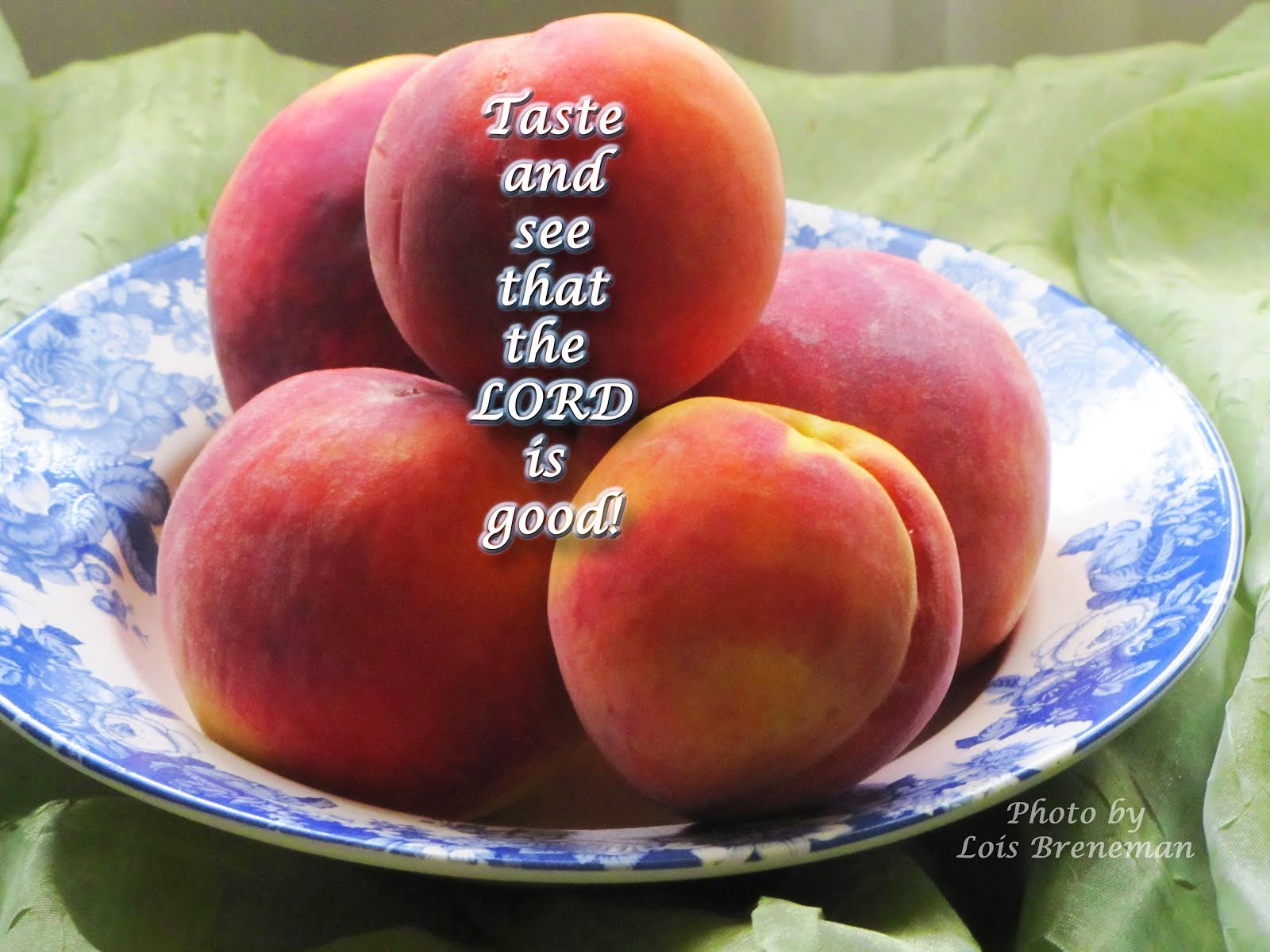 Peaches: Taste and See