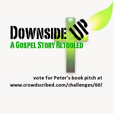 Vote for my Crowdscribed Book!
