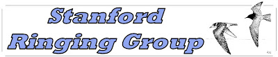Stanford Ringing Group Blog