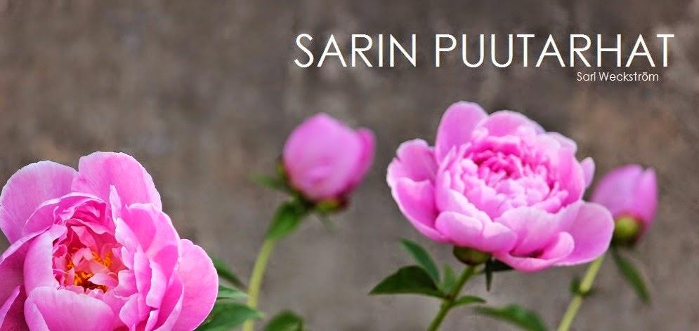 Sari's favourites: Beautiful garden blogs