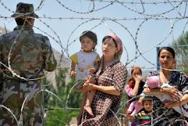 Israel viola os direitos humanos
