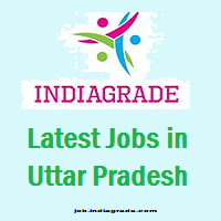 Latest Jobs in Uttar Pradesh 2016