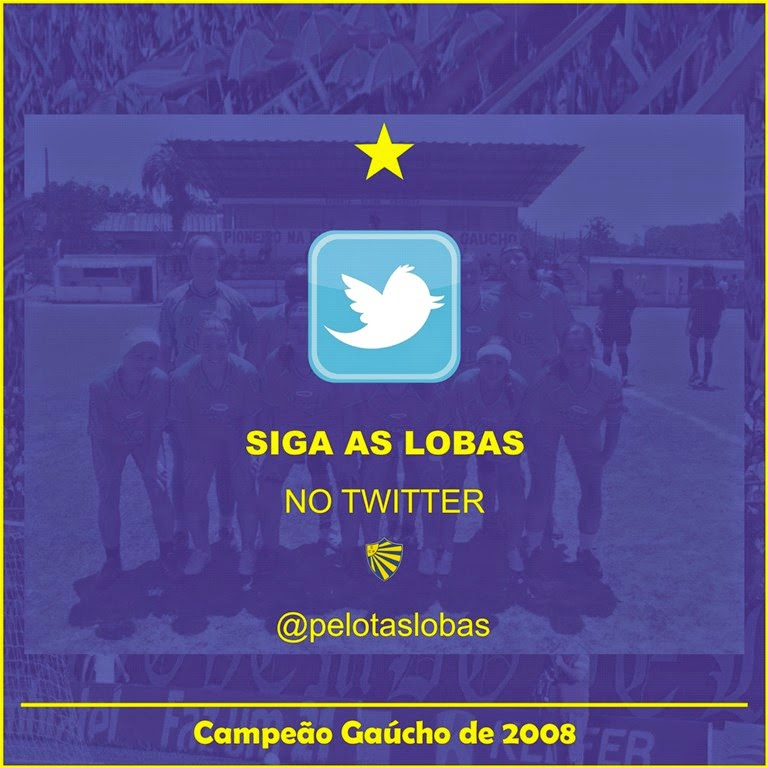 Siga as Lobas no Twitter