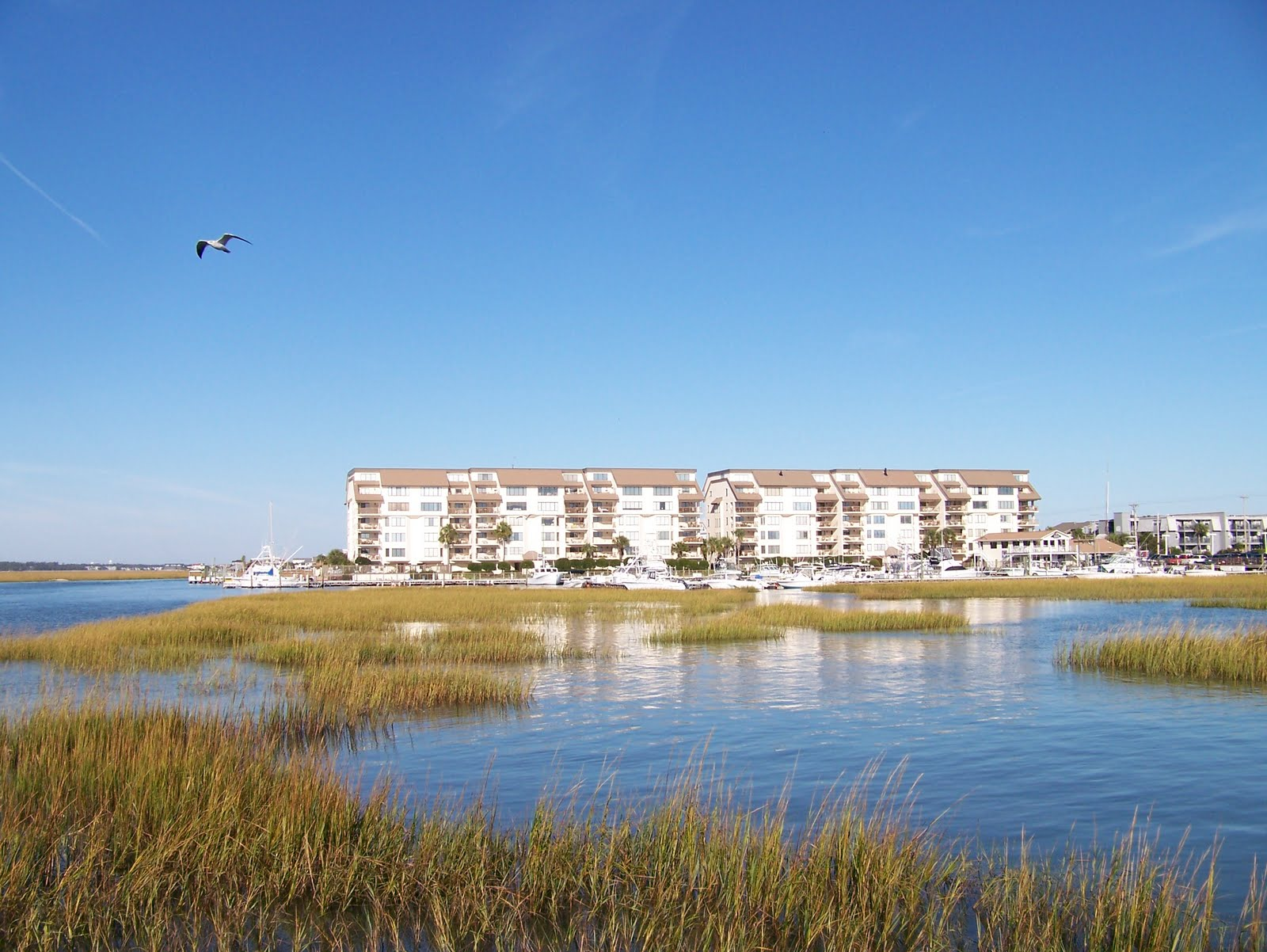 Garden City Realty Vacation Property Rentals And Sales Welcome To Garden City Beach South