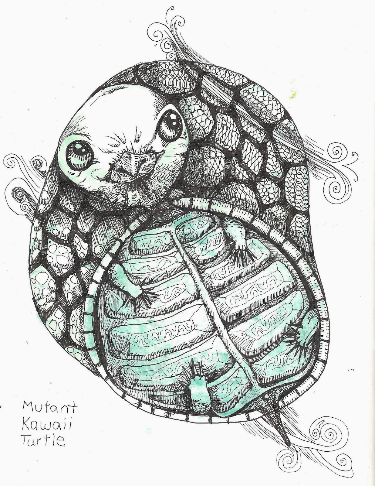 how to get instant drawing for turtle