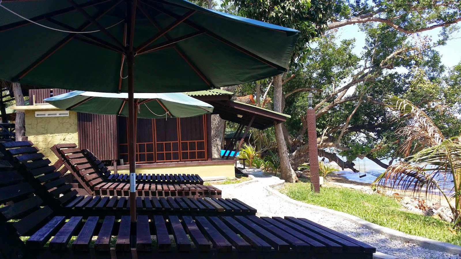 The Existing Preserved Original Trees Found Along Beach Of Umang Chalet Helps To Shade From Direct Sun