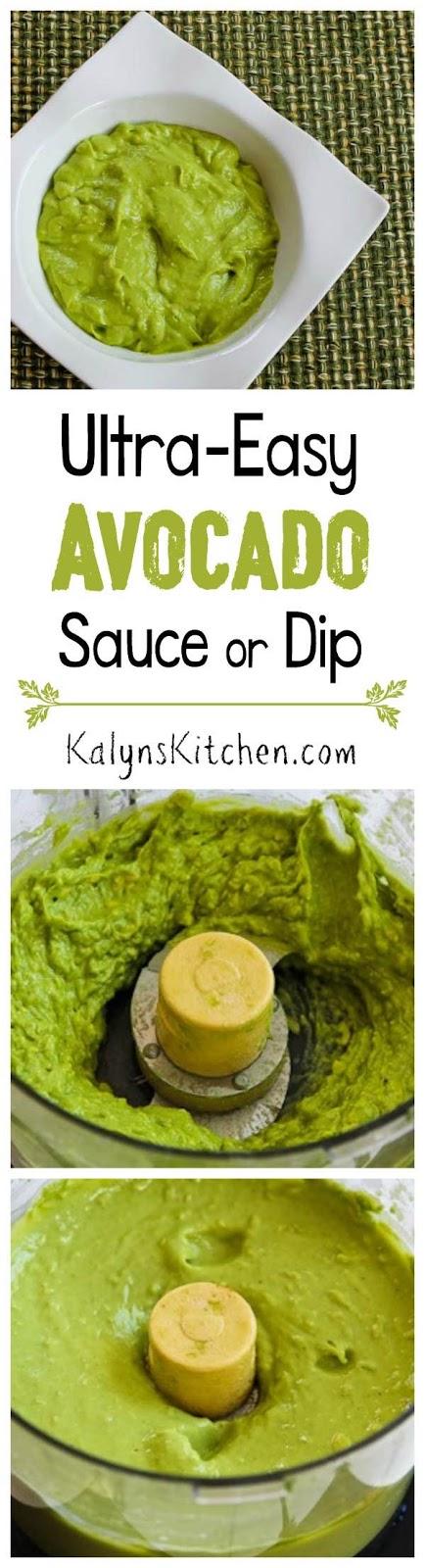 Ultra Easy Recipe for Avocado Sauce or Dip (and ten ...