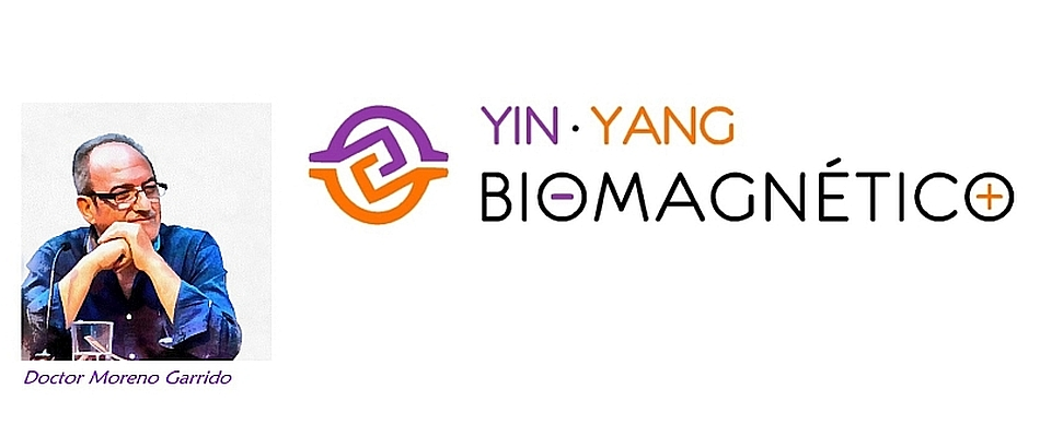 Yin Yang Biomagnético