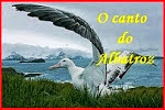 Blog O Canto do Albatroz