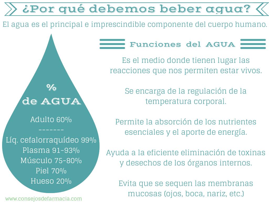 ¿Por qué es importante beber agua?