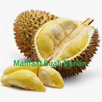 Buah Durian Kuning