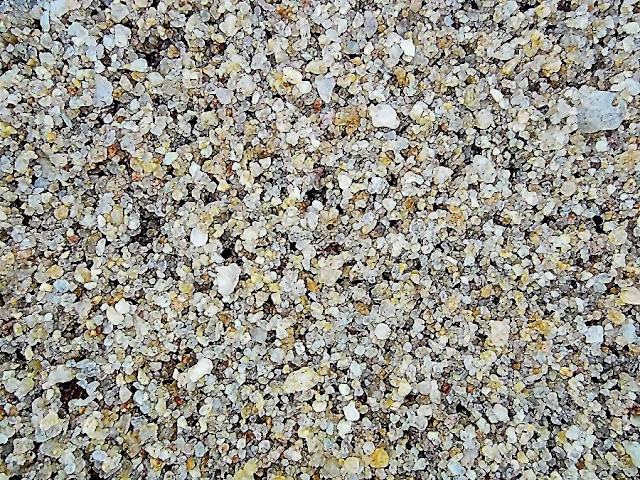 sand grains on a beach