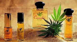 Crean un perfume con olor a marihuana