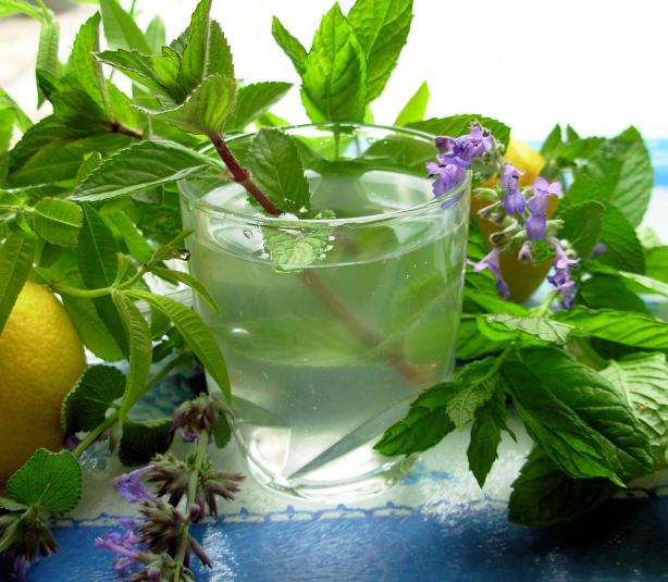 Lemon+Verbena+and+Mint+Tea+-+French+Verveine+and+Mint+Tisane2.jpg