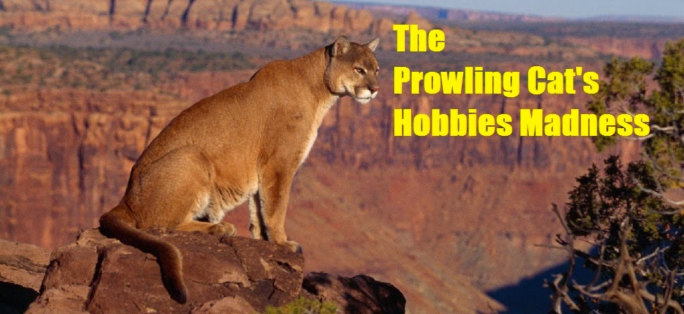 The Prowling Cat's Hobbies Madness