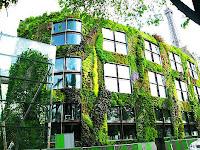 Vertikal garden untuk membangun gedung berkonsep alam